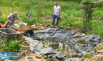 Pond reconstruction- scary to look at