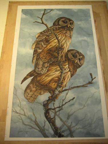 owlsbefore.jpg