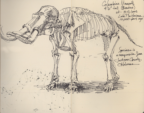 columbianmammoth.jpg