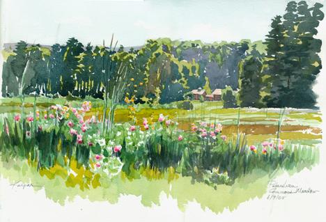 Petersham Commons Meadow