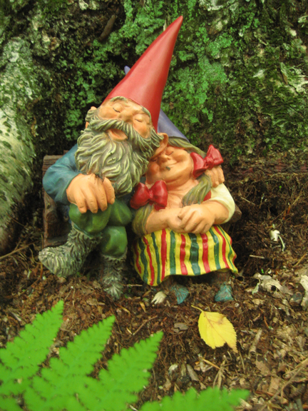 In the Harvard Forest, where even the gnomes are content.