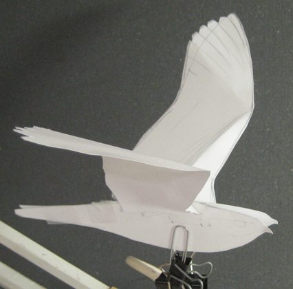 A Paper Model Of Nightjar To Sketch From In Creating Plate For Birds