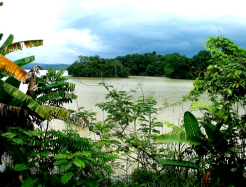 Lagoon, Barro Colorado Island, Panama