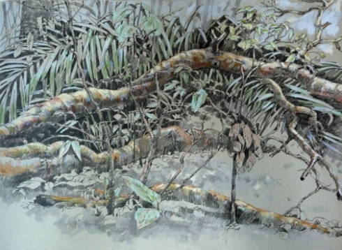 "A fallen branch creates a clearing in the forest; the light it admits to smaller trees more than makes up for the mess it makes. 18""x24"" graphite and pastel on Rives BFK."