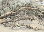 "A big fallen branch means a new lightgap; 24""x18"" pastel and graphite plein air, drawn on Barro Colorado Island."