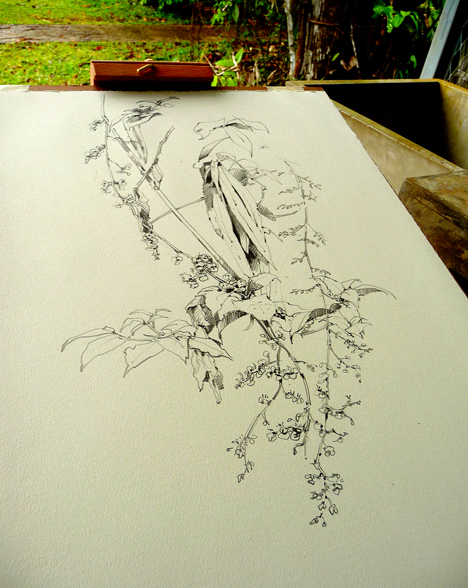 Drawing on site in Panama