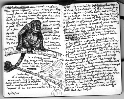 A typical page from my notebook, BCI 2005