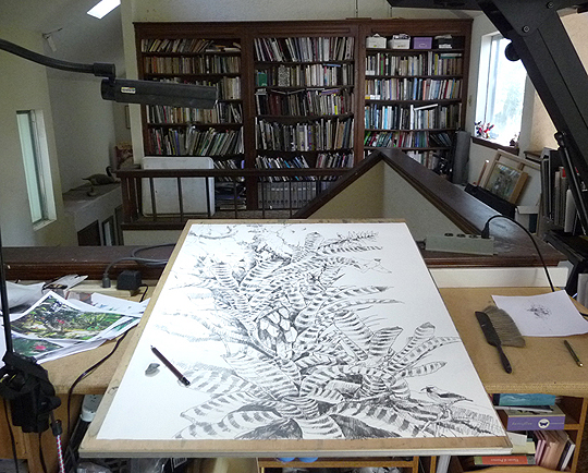 "A new work for my show, field sketches combined in the studio on a large sheet of paper 30"" x 39"""