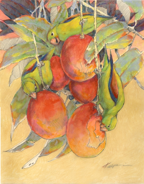"""Canal Zone- Orange-chinned parakeets on mangos"" Graphite and pastel on paper, 16"" x 20"". From field sketches made from the balcony of a friend's house in Gamboa."