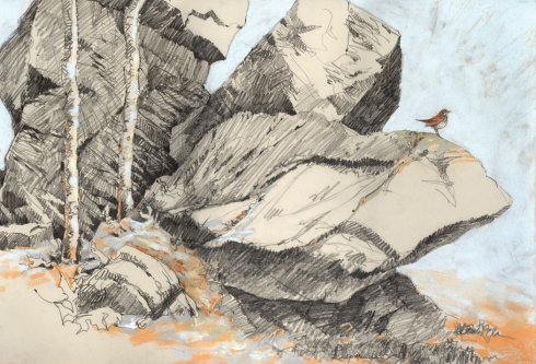 "19th Century Quarry with Hermit Thrush, 22"" x 15"" pastel and graphite on paper, drawn plein air in the Harvard Forest. Now on display in Birds in Art through November 15"