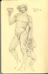 Michelangelo's Bacchus, Bargello, Florence