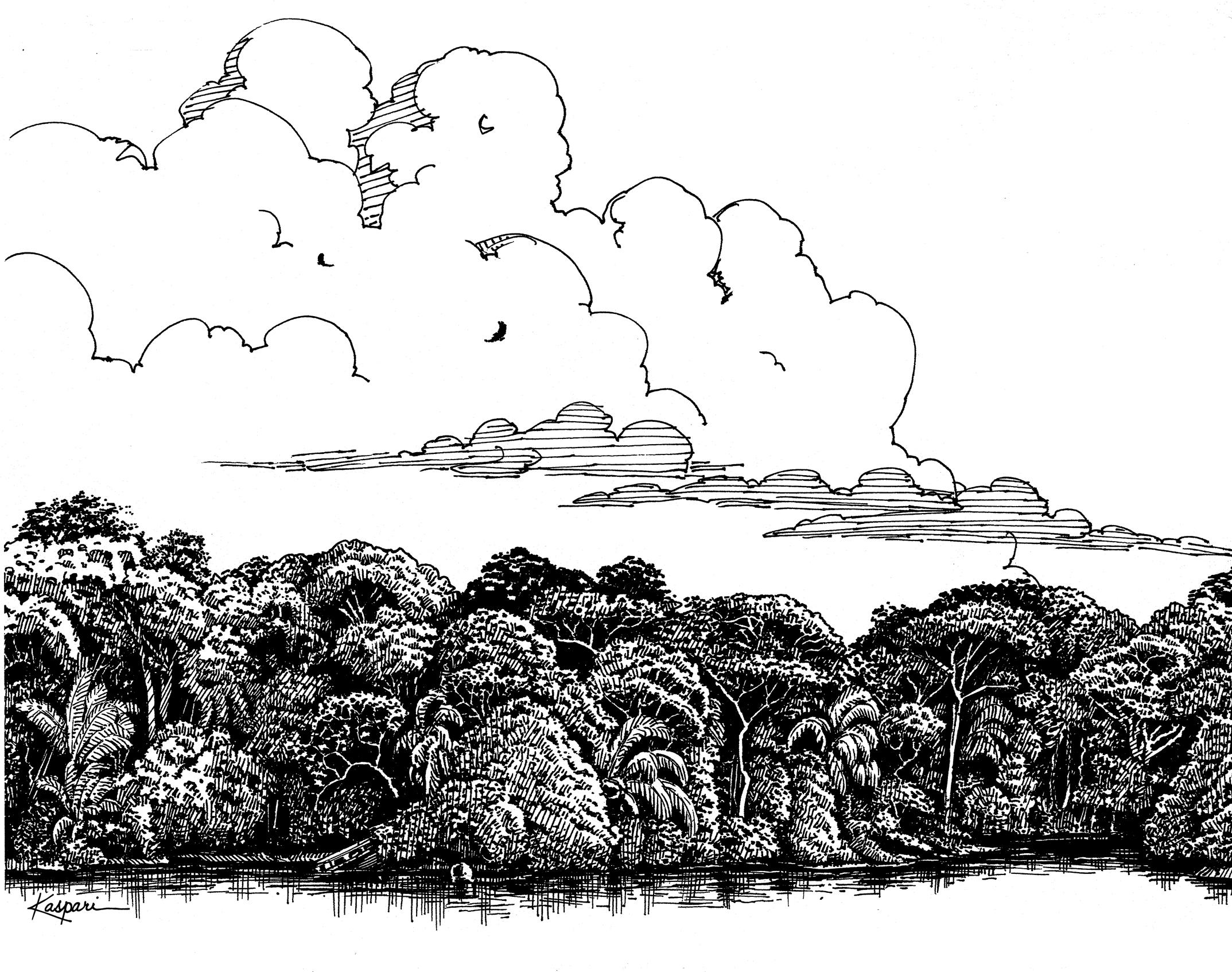 Plein Air Drawing Bcilaguna1998