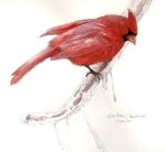 CardinalSnowday
