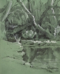 Creek at Martin Nature Park, Oklahoma. Graphite and chalk on paper.