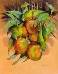 "Orange-chinned parakeets in mangoes, Panama; oil on paper 16"" x 20"""