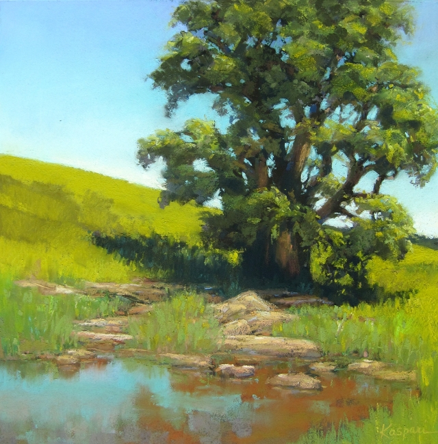 """Waiting for Bison, Tallgrass Prairie Waterhole""; mostly plein air pastel 15"" x 14"""