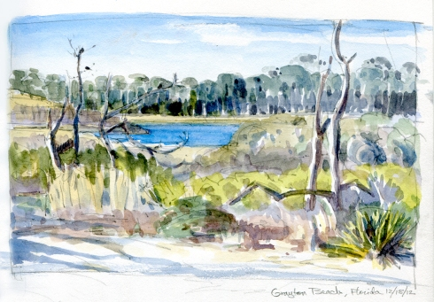 Grayton State Beach coastal dune lake habitat near Pensacoloa, Florida. Watercolor over pencil.