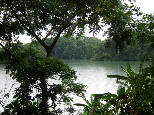 Barro Colorado- once a mountain top and turned into an island by a man, a plan, a canal, Panama.