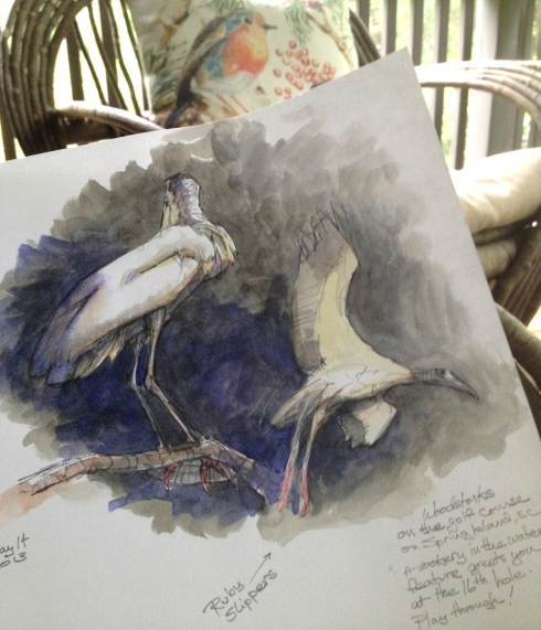"Dozens of pairs of breeding woodstorks on a little island in the water hazard at Spring Island, South Carolina. Drawn through a scope from the space between the green and the sand trap. watercolor wash over pencil on Stillman & Birn 8 1/2"" x 11"" Alpha Series hardbound book with mechanical pencil."