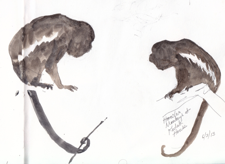 Howler monkeys, watercolor on paper. Drawn from life, Barro Colorado Island, 2013