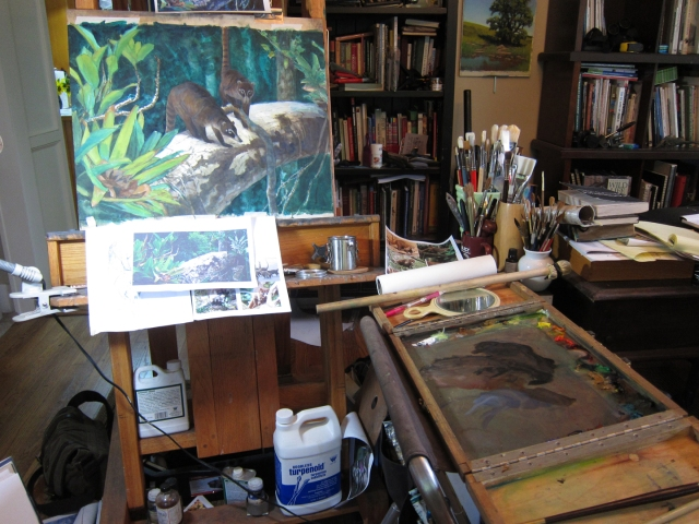 "On the easel: a pair of coati mundis, posed on a high branch in a tropical forest. The coatis were sketched in Panama, the branch photographed in the Peruvian Amazon. Please don't tell anyone. Oil on Arches primed paper, 24"" x 18"". Please note the wooden palette box at the right. I built it. They're usually called a ""French Mistress"" but since I made it I'm calling it a ""Rumanian Gigolo"". 'Nuff said."