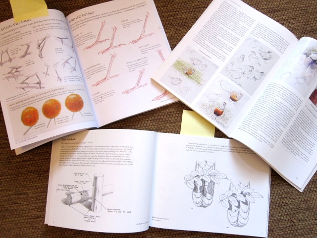 Clockwise from left: The Laws Guide to Drawing Birds, Drawing and Painting Birds, Capturing the Essence