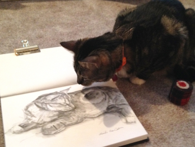Heidi the cat sniffs at her portrait, in water-soluble graphite in a Stillman & Birn sketchbook. Christmas Day, Lincoln, Nebraska.