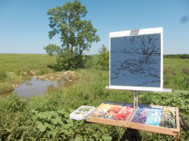 Second pastel of the day, at a waterhole by the side of the road. Favored by sneaky bison, apparently.