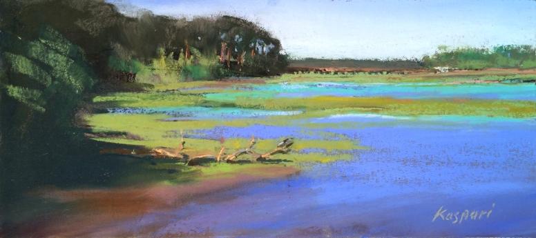 Spring Island Flats