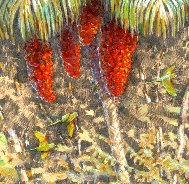 I stole the parakeets from another piece, a mixed media drawing I'd done plein air (more or less) on Barro Colorado Island.