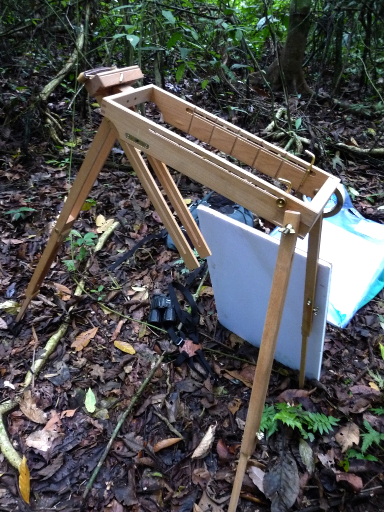 This is my drawing rig for field studies: a Jullian watercolor easel, drawing board and sheets of Rives BFK paper. And various pencils and stubs of pastels. This is along one of the dense forest trails on Barro Colorado Island, Panama.