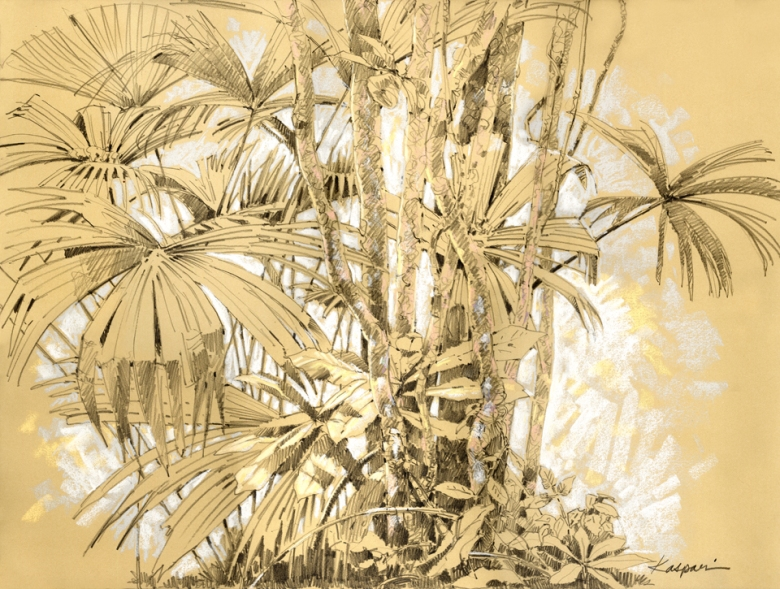"Palm edge, Barro Colorado Island, Panama. Drawn in the field, this mixed media drawing, also in this exhibit, was the source of the background for ""I've Heard That Song Before""."
