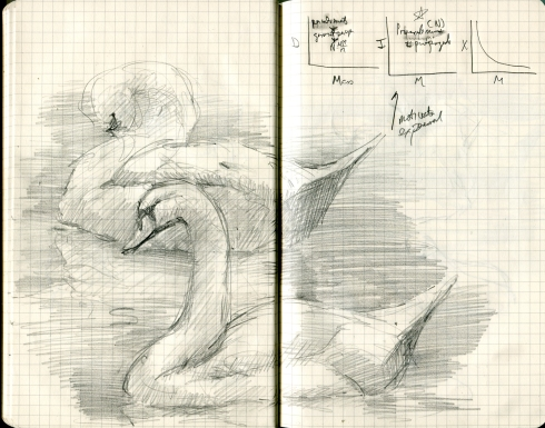 We had to drive to Houston to get our paperwork in order at the Danish consulate. The mute swan is, by sheerest coincidence, the national bird of Denmark. These two were afloat in the tiled pond in the Houston Embassy Suites lobby. Sketched in a borrowed Moleskine notebook, equations and all.
