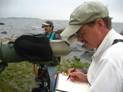 Barry Van Dusen scope draws shorebirds in a Connecticut marsh, while bird artist Mike DiGiorgio does the same right behind.