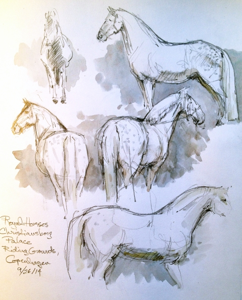 Every morning the Royal steeds get a workout in the huge riding ring behind the castle, practicing their teamwork skills, keeping in shape for ceremonial coach-drawing, if that's a word. Come to think of it, it's a great place to sketch. T