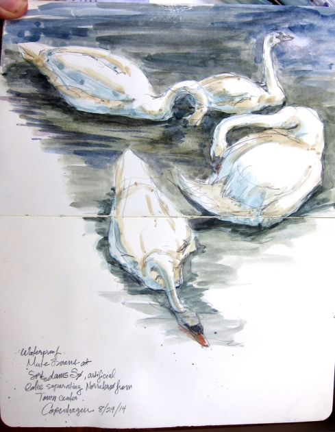 Who can ever get enough swans, and what's a castle moat without them? Mute Swans, Copenhagen. Watercolor over pencil, Moleskine 5 x8.
