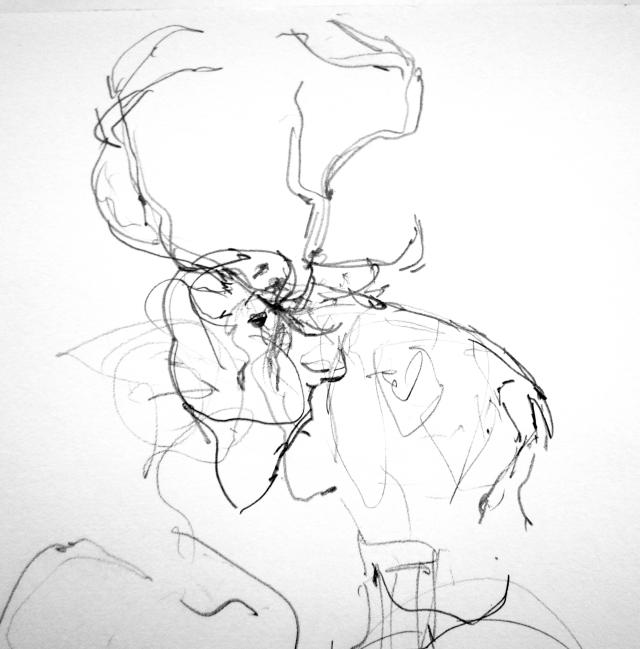 """Reindeer, Copenhagen Zoo. Pencil on Robert Bateman 8 1/2"""" x 11 sketchbook."""