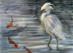 Snowy Egret watercolor