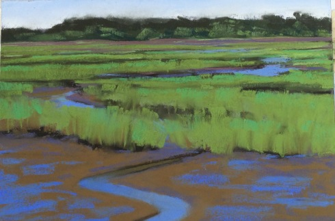 "The tide went out like someone pulled the plug. The yellow crowned night heron walked over the mudflats and peered into the little channel, looking for stranded critters, or maybe a fiddler crab. Spring Island, South Carolina. Pastel on sanded paper, measurements approximately 14"" x 12"""
