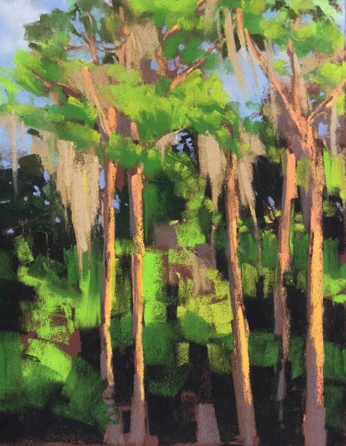 Spanish Moss Florida